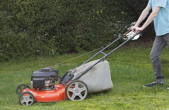 草坪修剪机应用